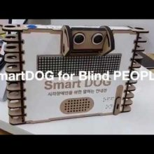 dCO smartDOG for BlindPEOPLE 2018 1 1280x720